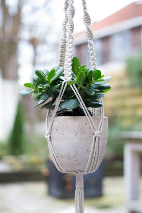 macrame plant hanger plant holder hanging planter home