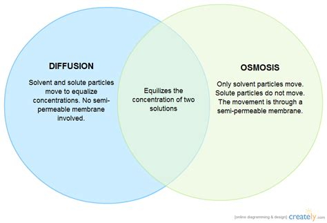 Diagram Osmosis 100 Images About Osmosis Olympia Water Systems