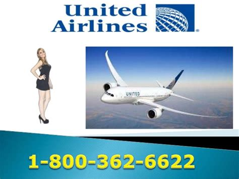 united contact united airlines phone number 800 362 6622 contact number
