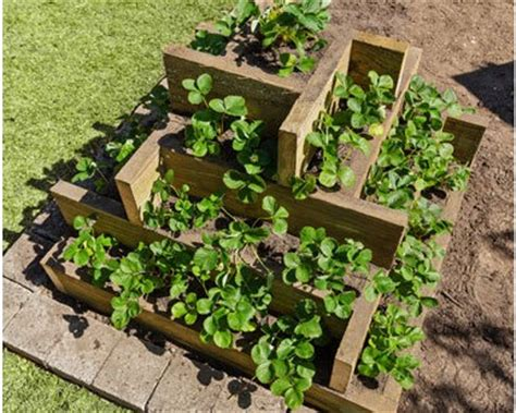 Raised Strawberry Planters by 13 Unique Diy Raised Garden Beds Home Stories A To Z