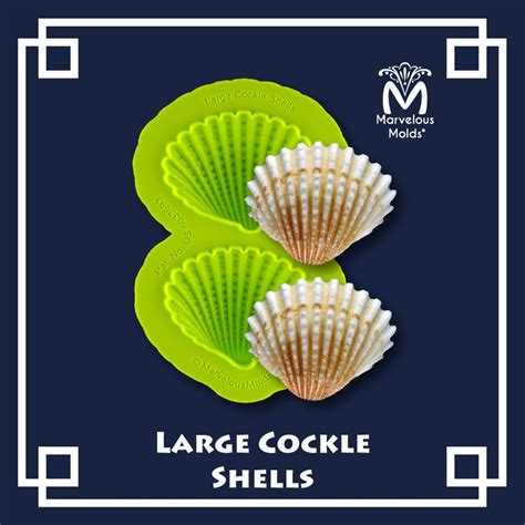 17 best images about shells 17 best images about and seashell mold collection on