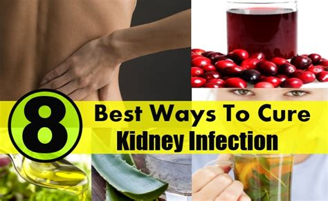 8 best ways to cure kidney infection diy health remedy