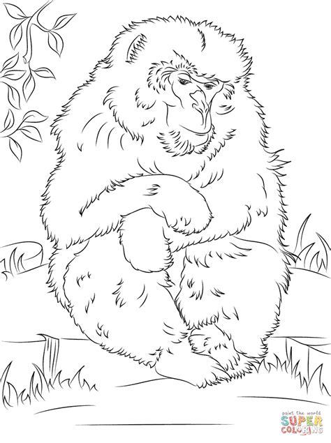 japanese macaque coloring page coloriage mignon macaque japonais coloriages 224
