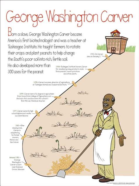 biography of george washington carver timeline ed digest poster elementary posters