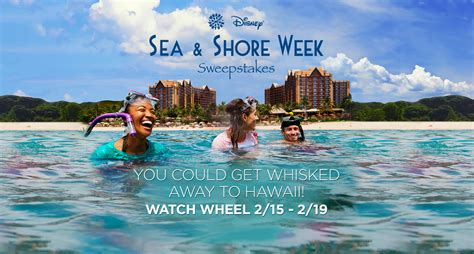 About Com Cash Sweepstakes - wheel of fortune disney sea shore week sweepstakes winzily