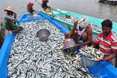 fishing boat rules in india in tenkaitittu fishing harbor puducherry fishermen