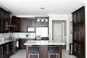 Kitchens With Dark Cabinets by Dark Maple Kitchen Cabinets Home Furniture Design