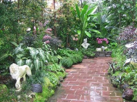 Botanic Garden Orchid Garden Vip Orchid Garden Picture Of Singapore Botanic Gardens Singapore Tripadvisor