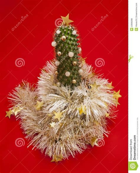 christmas tree the decorated cactus royalty free stock