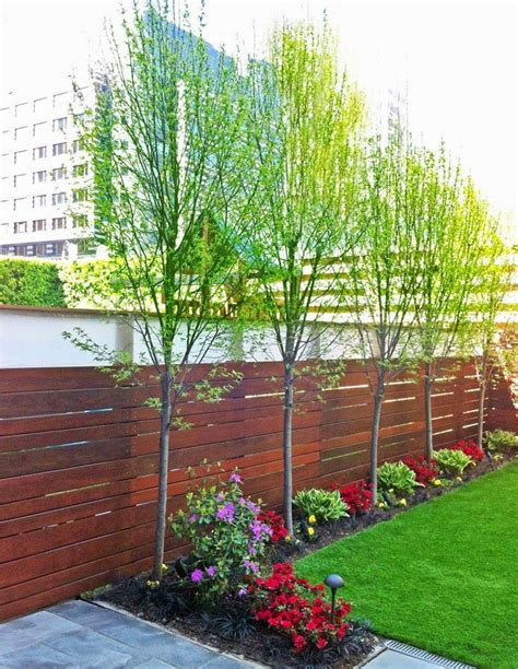 Tree In Backyard by 25 Best Ideas About Landscaping Along Fence On