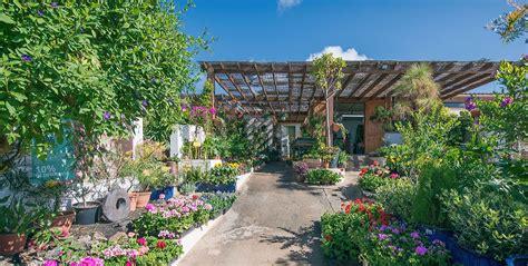 Flower Power Garden Centres Flower Power Garden Centre Garden Centre