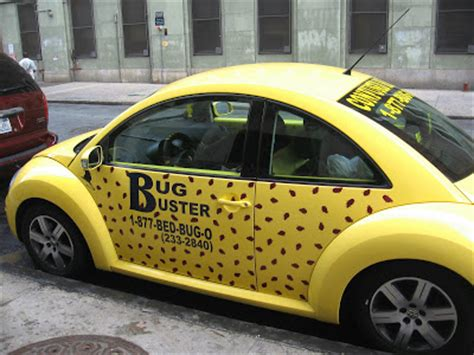 bed bugs in cars how to get rid of bed bugs bed bugs registry