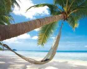 plages plage de r 234 ves avec palmier et hamac
