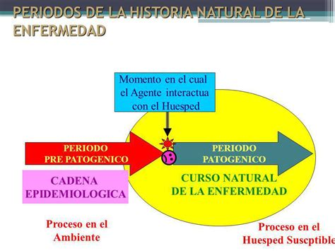 cadena epidemiologica historia natural dela enfermedad historia natural de la enfermedad ppt video online descargar