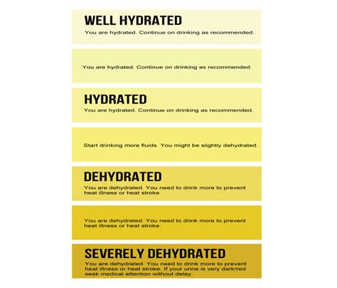 a hydration level of high and assessing dehydration don t forget the