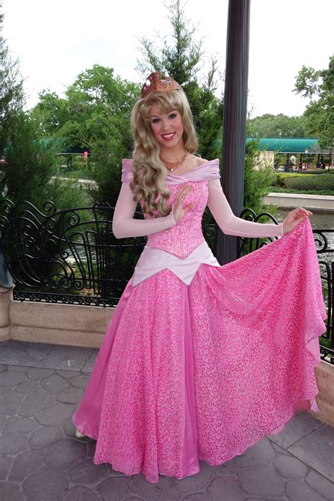 Arora Dress princess dress wanted