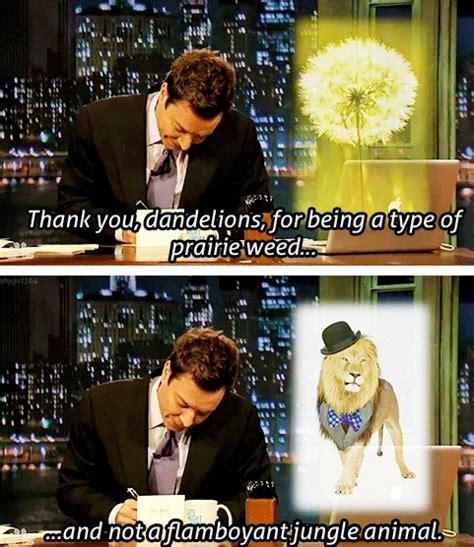 Thank You Letter Jimmy Fallon jimmy fallon thanking dandelions thank you notes