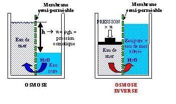 comment dire catamaran en anglais le dessalement de l eau de mer et des eaux saum 226 tres