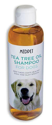 tea tree for fleas on dogs tea tree shoo