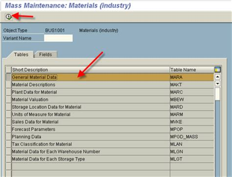 mara table in sap top 24 invention in sap mm mass maintenance