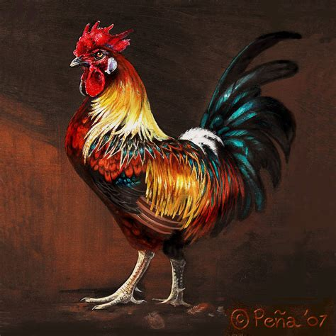 black and white rooster wallpaper rufus the rooster by reptangle on deviantart