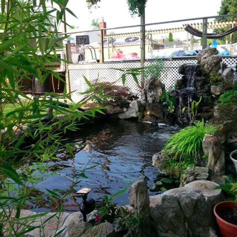 backyard pic advantages of a backyard pond politan real estate