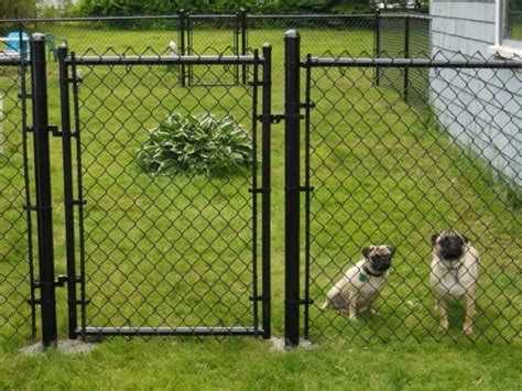 how to keep dog in yard without fence perimeter fence for dogs fence ideas