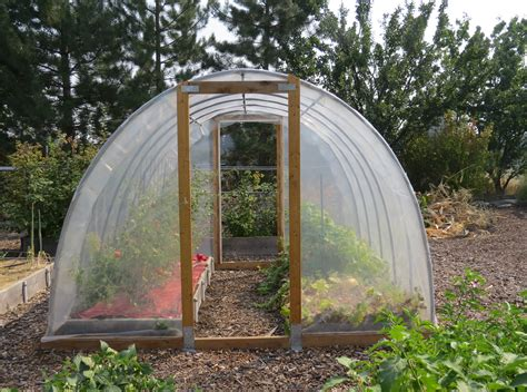 hoop house how to build your own food filled greenhouse for 300 in just 2 days the hearty soul