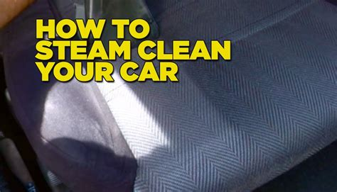 how to clean diarrhea from couch how to clean human out of carpet 28 images carpet