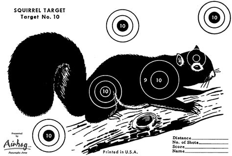 printable shooting targets squirrel free worksheets 187 target practice printable free math