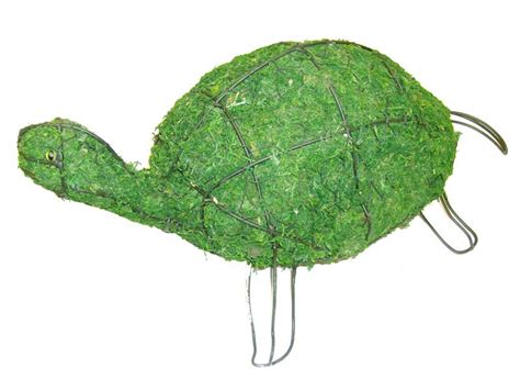 turtle topiary frame turtle aquatic animal topiary frame