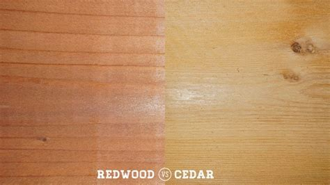 redwood color redwood vs cedar timbertown