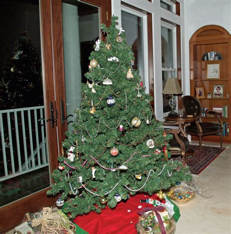 the tradition of the christmas tree the post newspaper