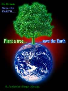 Plant Trees Save Environment Essay by Save Earth Quotes Quotesgram