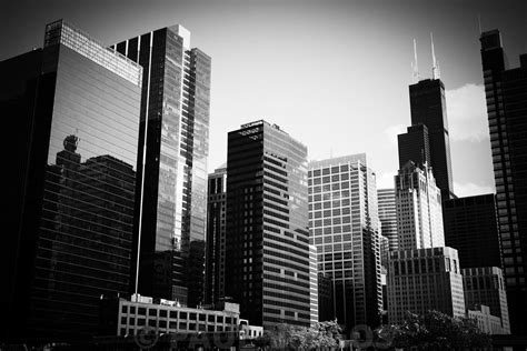 image downtown chicago buildings in black and white large canvas print buy stock photo metal