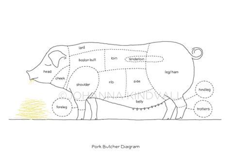 pig diagram butcher pig butcher drawing