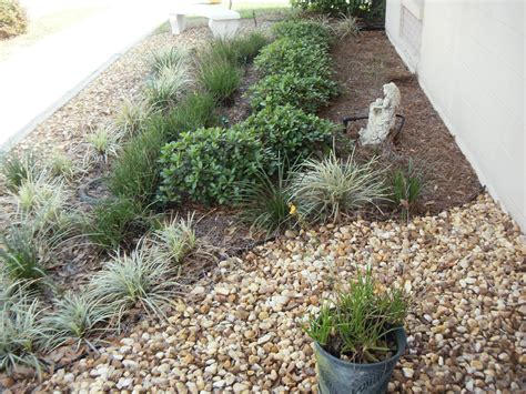 Landscape Plants For South Florida Florida Landscape Plants