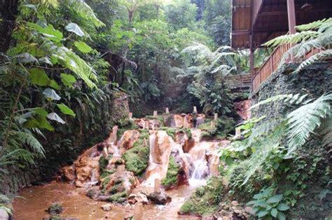 Kalung Daun kung daun picture of kung daun bandung tripadvisor