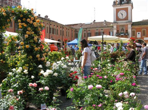 romagna romagna in fiore sassuolo in fiore sassuolo mo 2017 emilia romagna