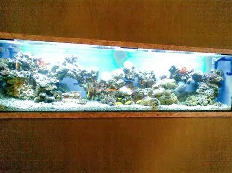 desain aquarium dinding desain aquarium dinding februari 2014