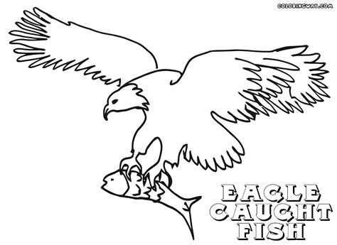 Catching Coloring Pages by Bald Eagle Catching Fish Coloring Page Sketch Coloring Page