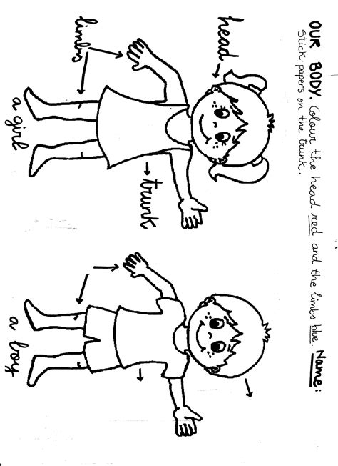 body coloring pages for toddlers body parts coloring pages for kids az coloring pages