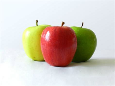 nichel alimenti permessi nichel e dieta