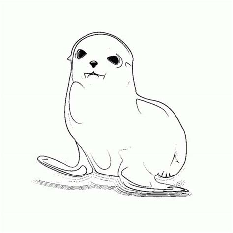 cute seal coloring pages cute baby seal coloring page coloring sky