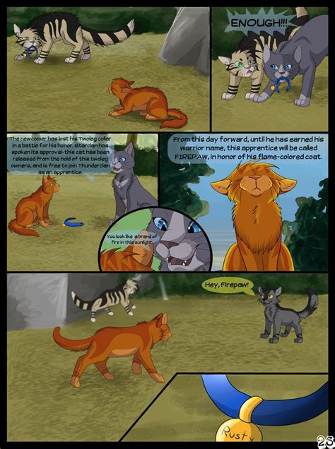 libro the wolf wilder 1000 images about warrior cats on warrior