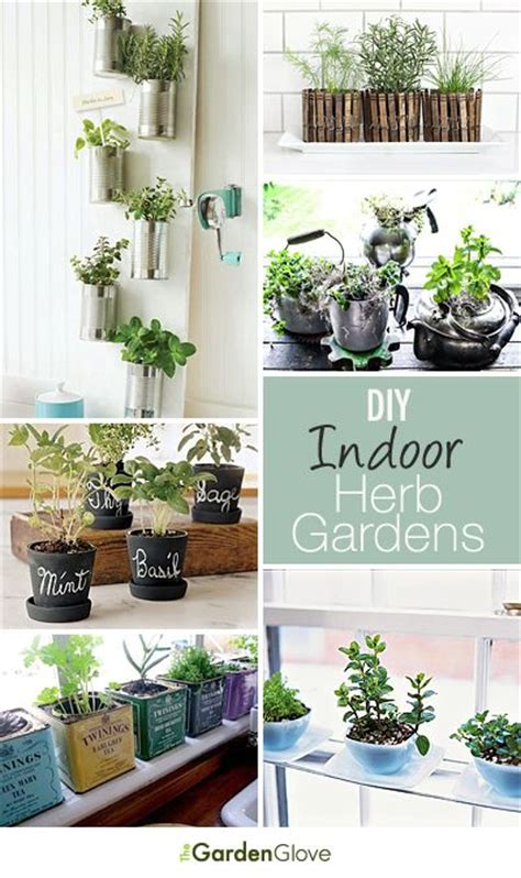 indoor herbs diy indoor herb gardens indoor herbs herbs garden and herbs