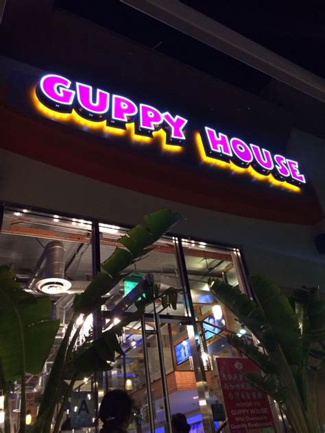 guppy house guppy house picture and images