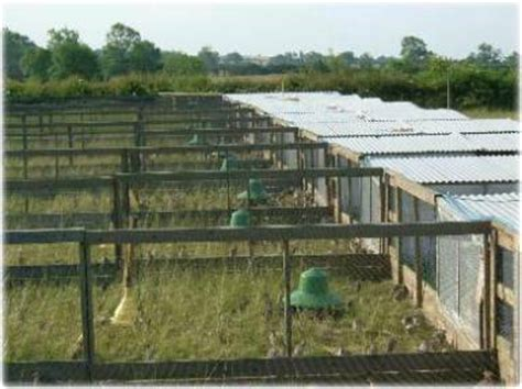 Pheasant Rearing Sheds by Grange About