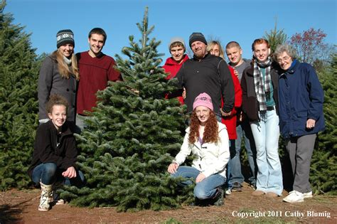 christmas tree farm family pictures images