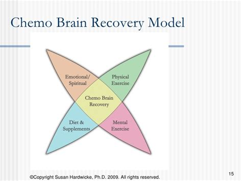 Do Detoxes Help Recover From Chemo by Cancer Survivor S Guide To Chemo Brain And Recovery